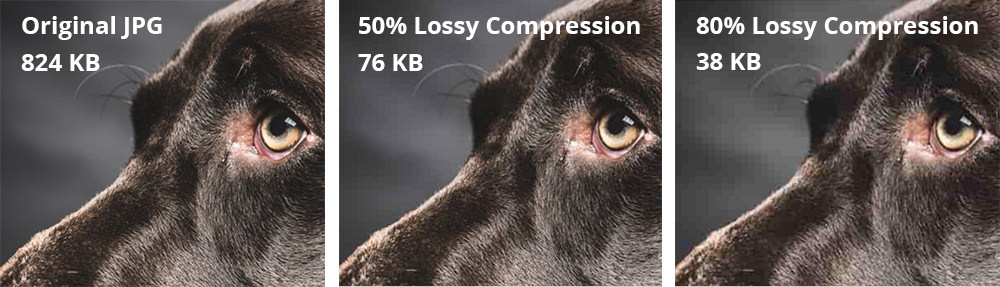 9 Free Jpeg Compression Tools With Lossy And Lossless Optimization