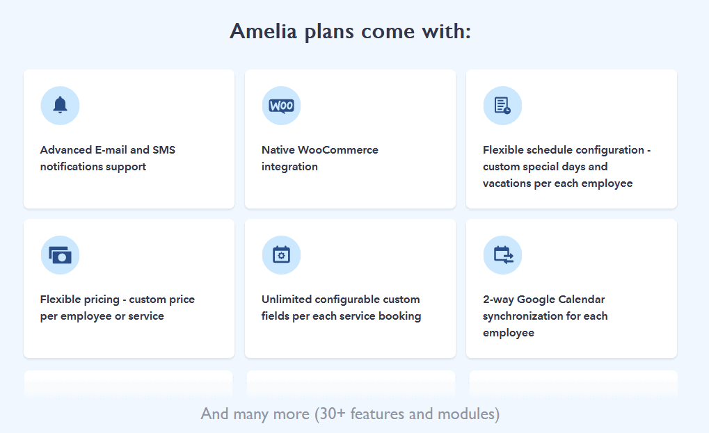 Amelia booking features